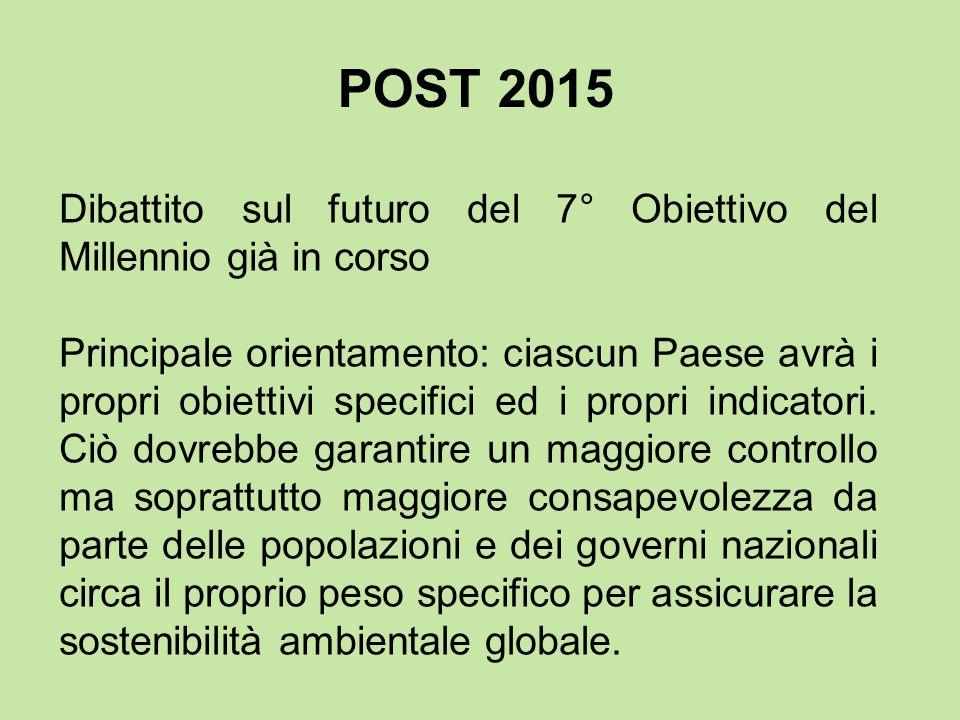 Dibattito sul futuro del 7° Obiettivo del Millennio già in corso Principale orientamento: ciascun Paese avrà i propri obiettivi specifici ed i propri