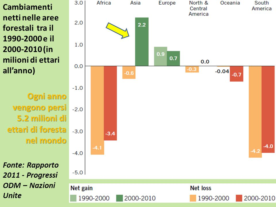 Cambiamenti netti nelle aree forestali tra il 1990-2000 e il 2000-2010 (in milioni di ettari all'anno) Ogni anno vengono persi 5.2 milioni di ettari d