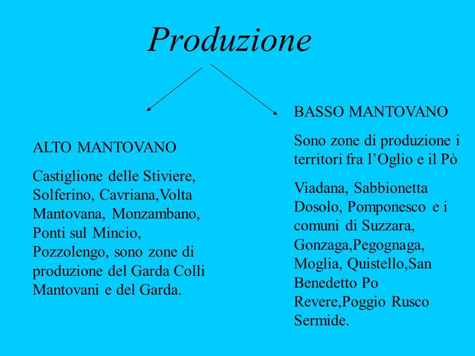 Produzione ALTO MANTOVANO Castiglione delle Stiviere, Solferino, Cavriana,Volta Mantovana, Monzambano, Ponti sul Mincio, Pozzolengo, sono zone di produzione del Garda Colli Mantovani e del Garda.