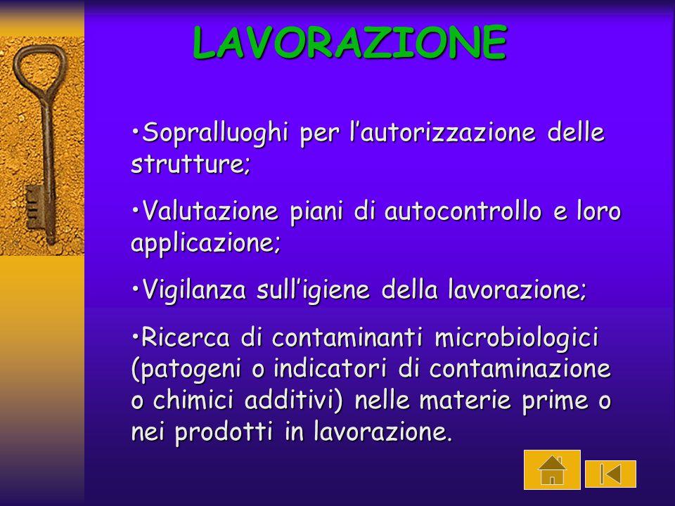LAVORAZIONELAVORAZIONELAVORAZIONE DISTRIBUIZIONEDISTRIBUIZIONEDISTRIBUIZIONE SOMMINISTRAZIONE (ristorazione collettiva e commerciale)SOMMINISTRAZIONE (ristorazione collettiva e commerciale)SOMMINISTRAZIONE (ristorazione collettiva e commerciale)SOMMINISTRAZIONE (ristorazione collettiva e commerciale)