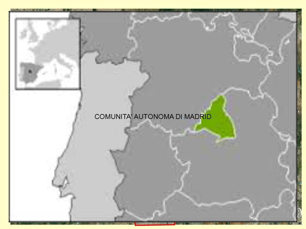 MADRID COMUNITA AUTONOMA DI MADRID