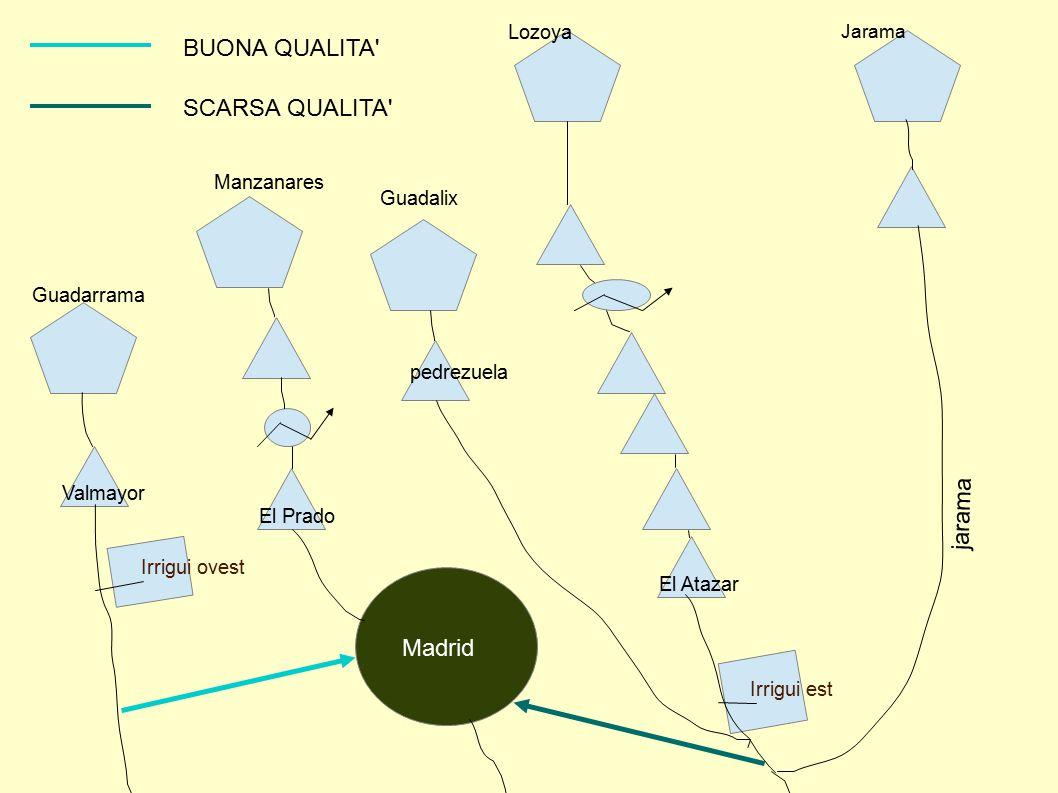 ANALISI DEL SISTEMA Il sistema Canal Isabel II consiste in un sistema si invasi il cui obiettivo è garantire acqua potabile alla comunità autonoma di Madrid in maniera tale da rispettare le esigenze di una popolazione, pari a 6 milioni di abitanti, tutto l anno.