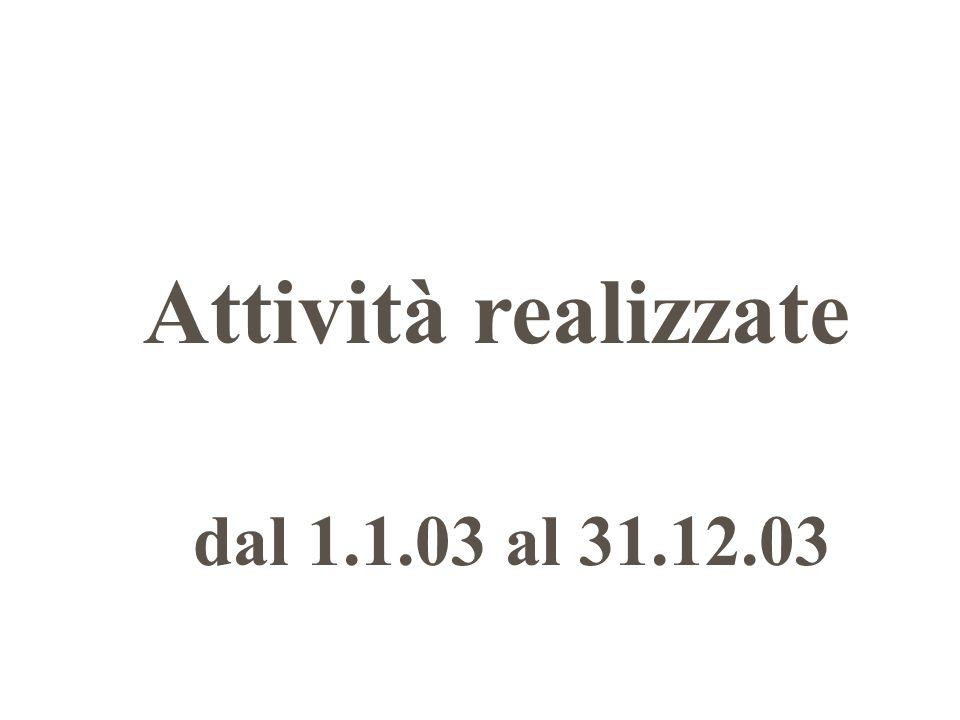 Attività realizzate dal 1.1.03 al 31.12.03