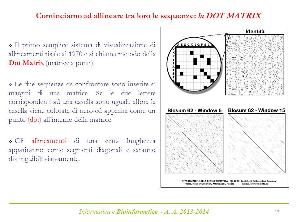 Informatica e Bioinformatica – A. A. 2013-2014 13 Cominciamo ad allineare tra loro le sequenze: la DOT MATRIX  Il primo semplice sistema di visualizz