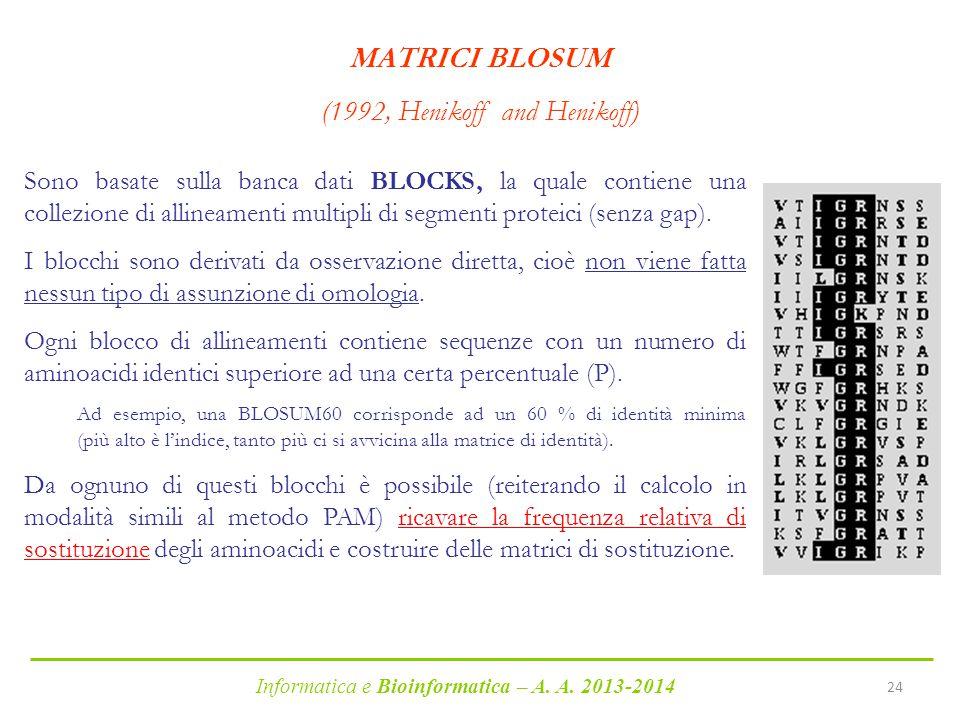 Informatica e Bioinformatica – A. A. 2013-2014 24 MATRICI BLOSUM (1992, Henikoff and Henikoff) Sono basate sulla banca dati BLOCKS, la quale contiene