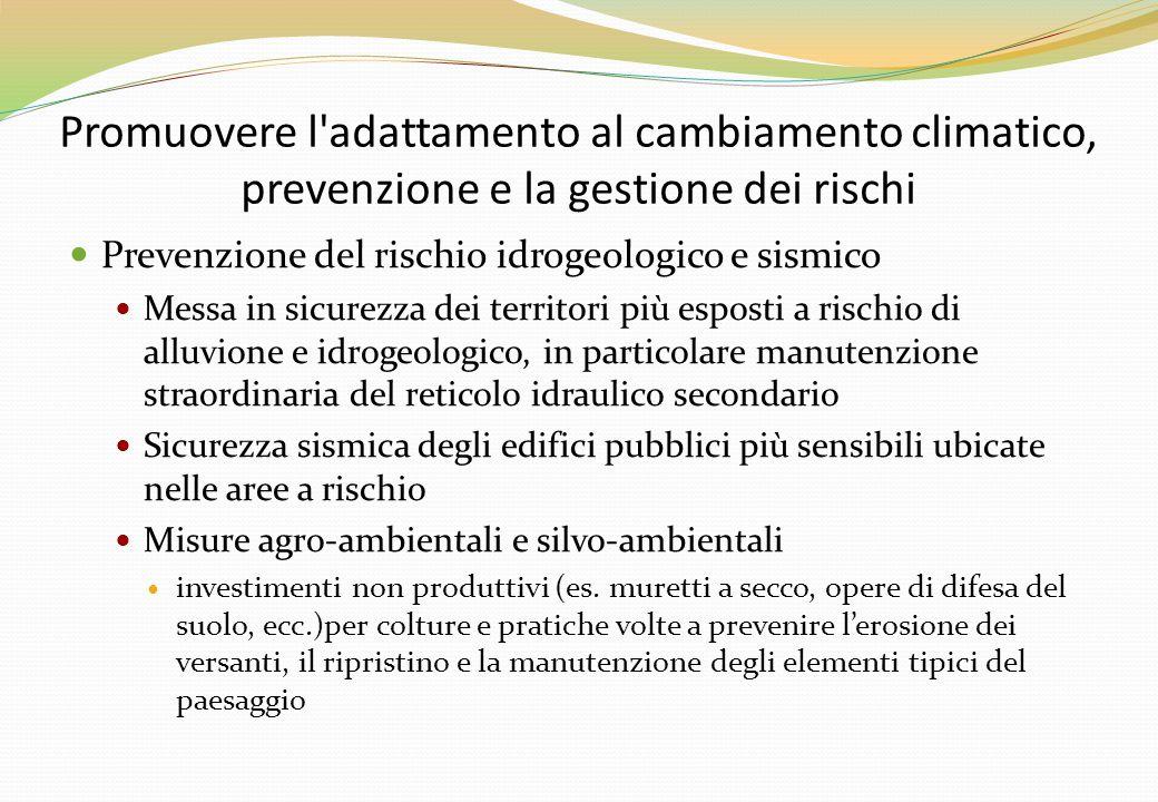 Promuovere l adattamento al cambiamento climatico, prevenzione e la gestione dei rischi Prevenzione del rischio idrogeologico e sismico Messa in sicurezza dei territori più esposti a rischio di alluvione e idrogeologico, in particolare manutenzione straordinaria del reticolo idraulico secondario Sicurezza sismica degli edifici pubblici più sensibili ubicate nelle aree a rischio Misure agro-ambientali e silvo-ambientali investimenti non produttivi (es.