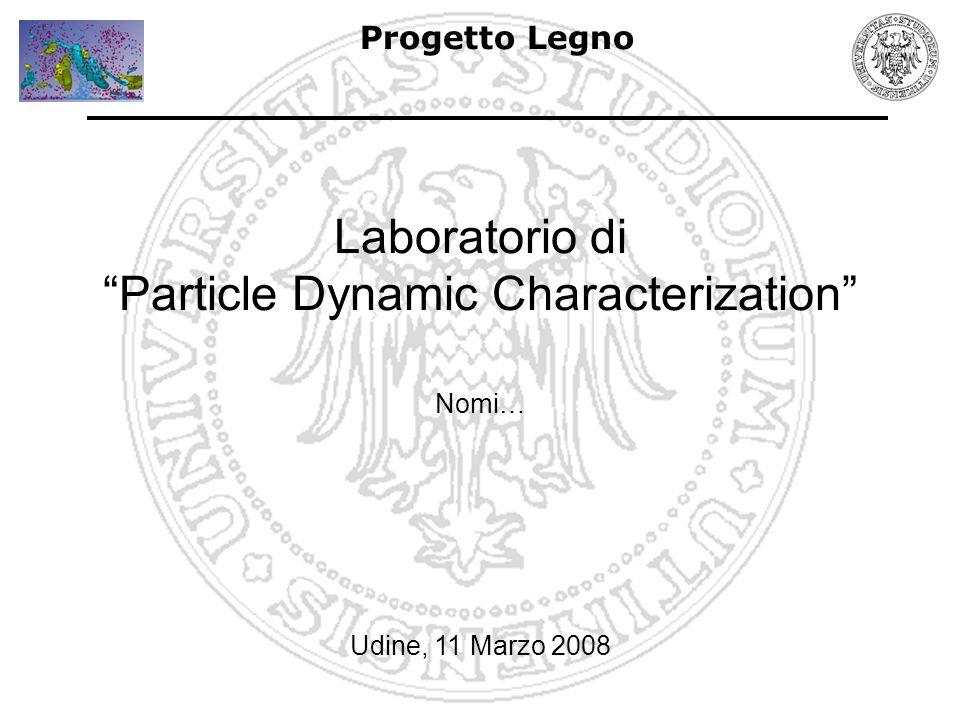 Progetto Legno Laboratorio di Particle Dynamic Characterization Udine, 11 Marzo 2008 Nomi…