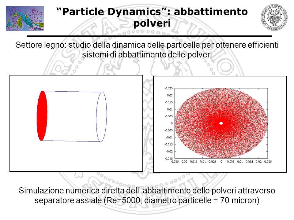 Particle Dynamics : verniciatura