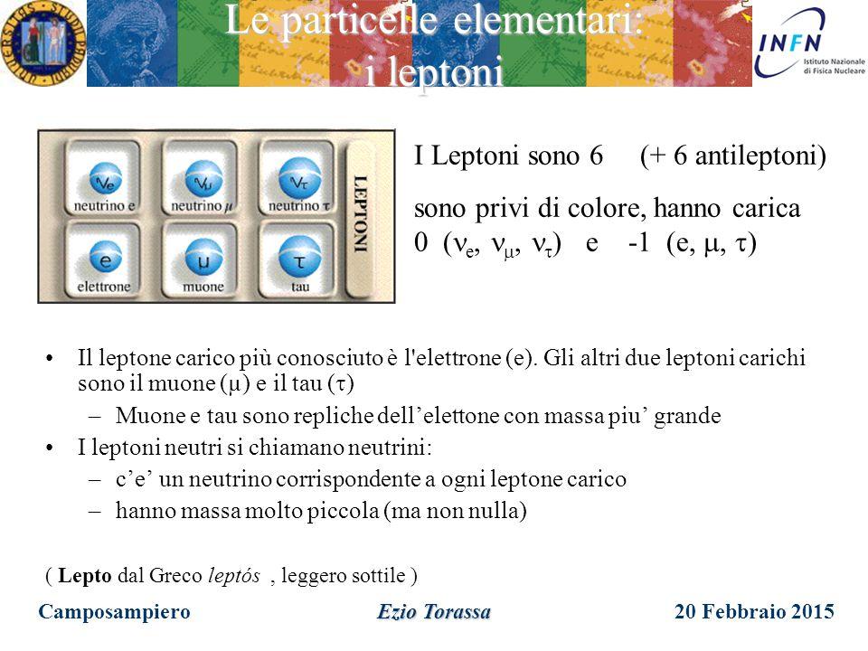20 Febbraio 2015 Ezio Torassa Le particelle elementari: gli adroni I Quark sono 6 (+ 6 antiquark) possono assumere 3 stati quantici chiamati colore, h