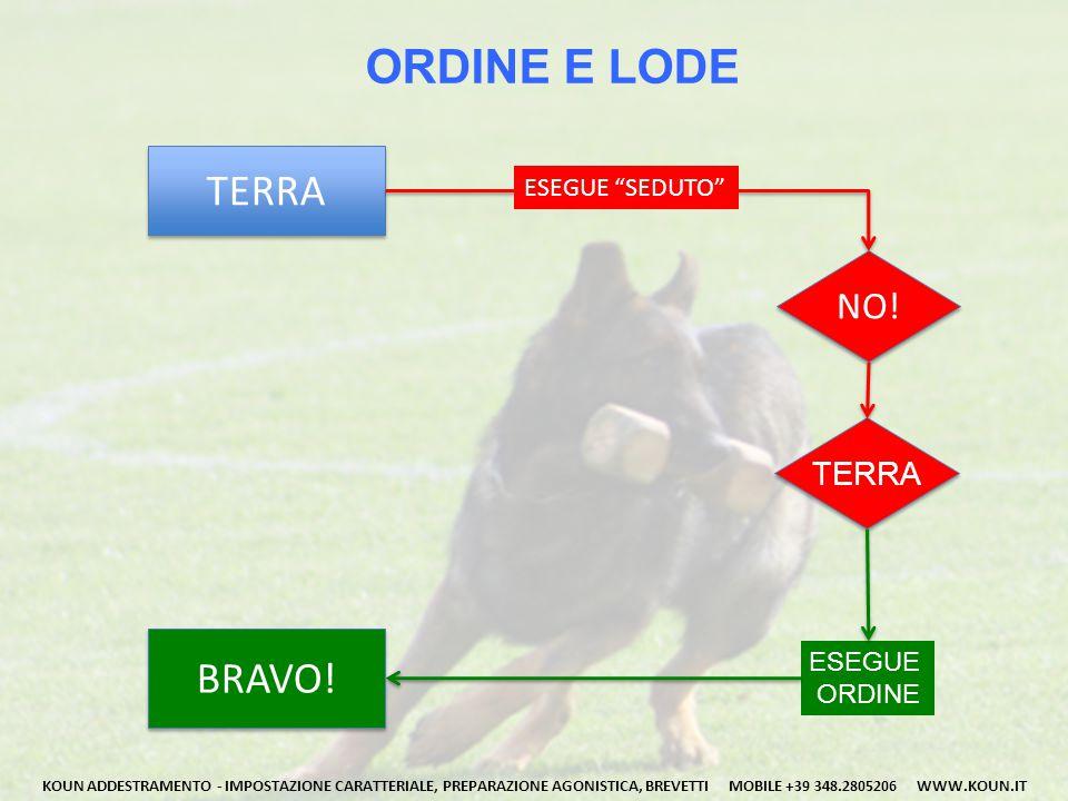 CIBO E GIOCO Il cane rivolge la sua attenzione al conduttore grazie a stimoli, che rappresentano una ricompensa finale (cibo, lodi, gioco).