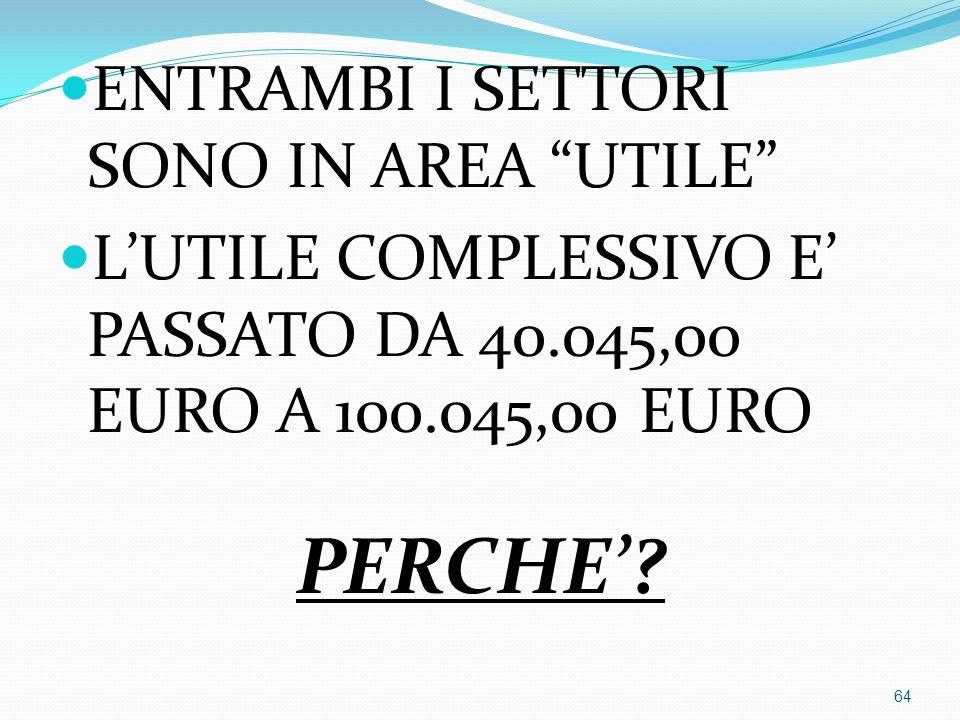"""ENTRAMBI I SETTORI SONO IN AREA """"UTILE"""" L'UTILE COMPLESSIVO E' PASSATO DA 40.045,00 EURO A 100.045,00 EURO PERCHE'? 64"""