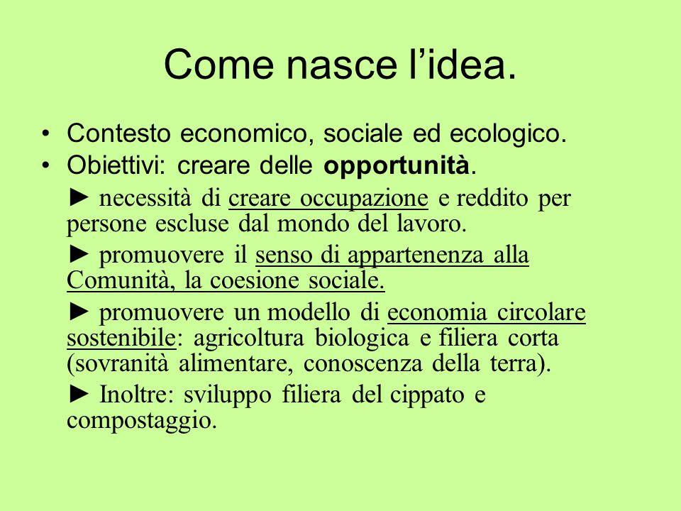 Come nasce l'idea. Contesto economico, sociale ed ecologico. Obiettivi: creare delle opportunità. ► necessità di creare occupazione e reddito per pers