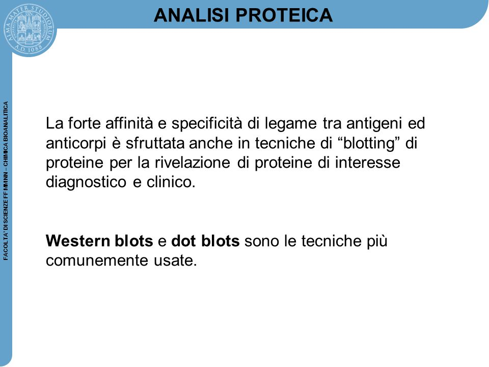 FACOLTA' DI SCIENZE FF MM NN – CHIMICA BIOANALITICA CL moleculeproduct enzyme detection antibody protein (a)(b) second anti-species antibody unlabeled detection antibody (c) biotin streptavidin Western Blot analisi: Dot Blot analisi: La differenza con il western blot consiste nel fatto che le proteine non sono separate per via elettroforetica, ma sono depositate direttamente sulla membrana.