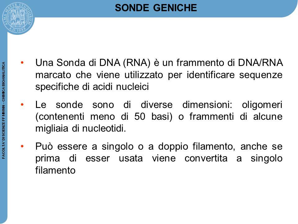 FACOLTA' DI SCIENZE FF MM NN – CHIMICA BIOANALITICA Una Sonda di DNA (RNA) è un frammento di DNA/RNA marcato che viene utilizzato per identificare seq