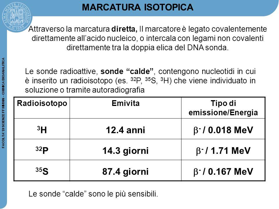 """FACOLTA' DI SCIENZE FF MM NN – CHIMICA BIOANALITICA Le sonde radioattive, sonde """"calde"""", contengono nucleotidi in cui è inserito un radioisotopo (es."""