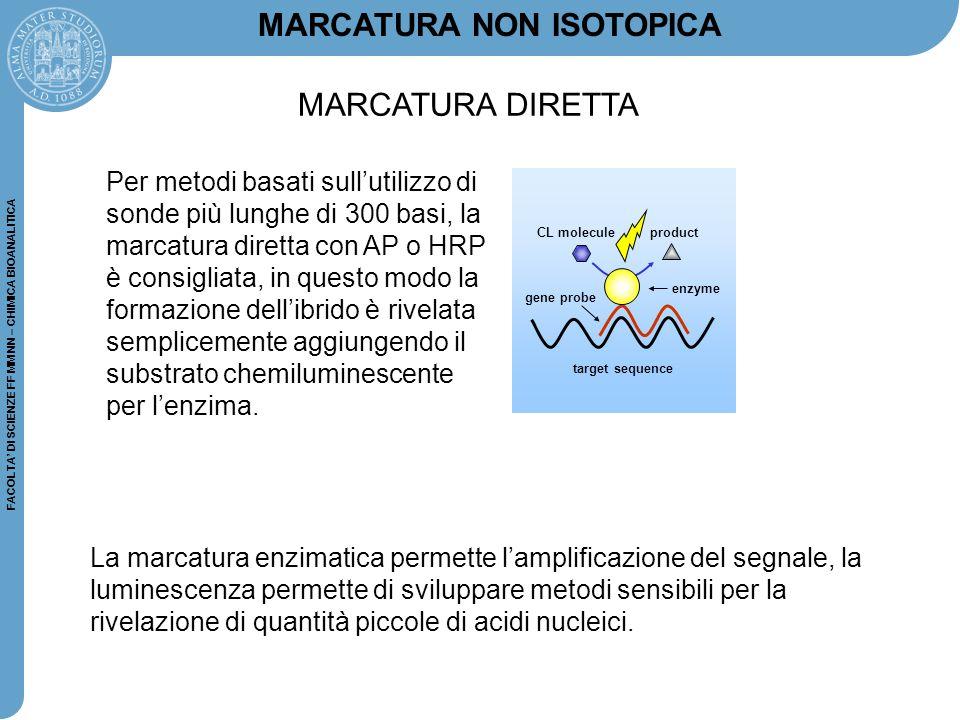 FACOLTA' DI SCIENZE FF MM NN – CHIMICA BIOANALITICA MARCATURA NON ISOTOPICA La marcatura enzimatica permette l'amplificazione del segnale, la luminesc