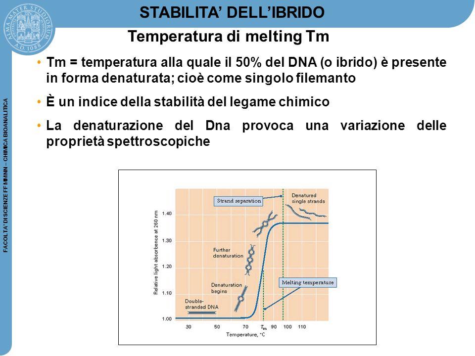 FACOLTA' DI SCIENZE FF MM NN – CHIMICA BIOANALITICA Tm = temperatura alla quale il 50% del DNA (o ibrido) è presente in forma denaturata; cioè come si