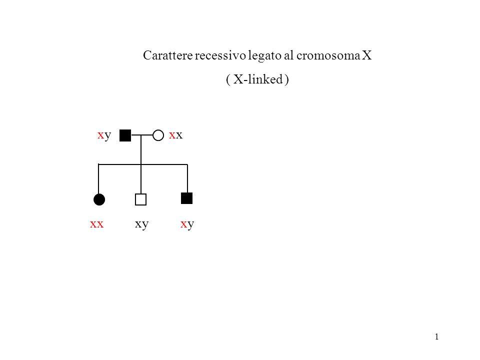1 xx Carattere recessivo legato al cromosoma X ( X-linked ) xyxyx xyxy xy
