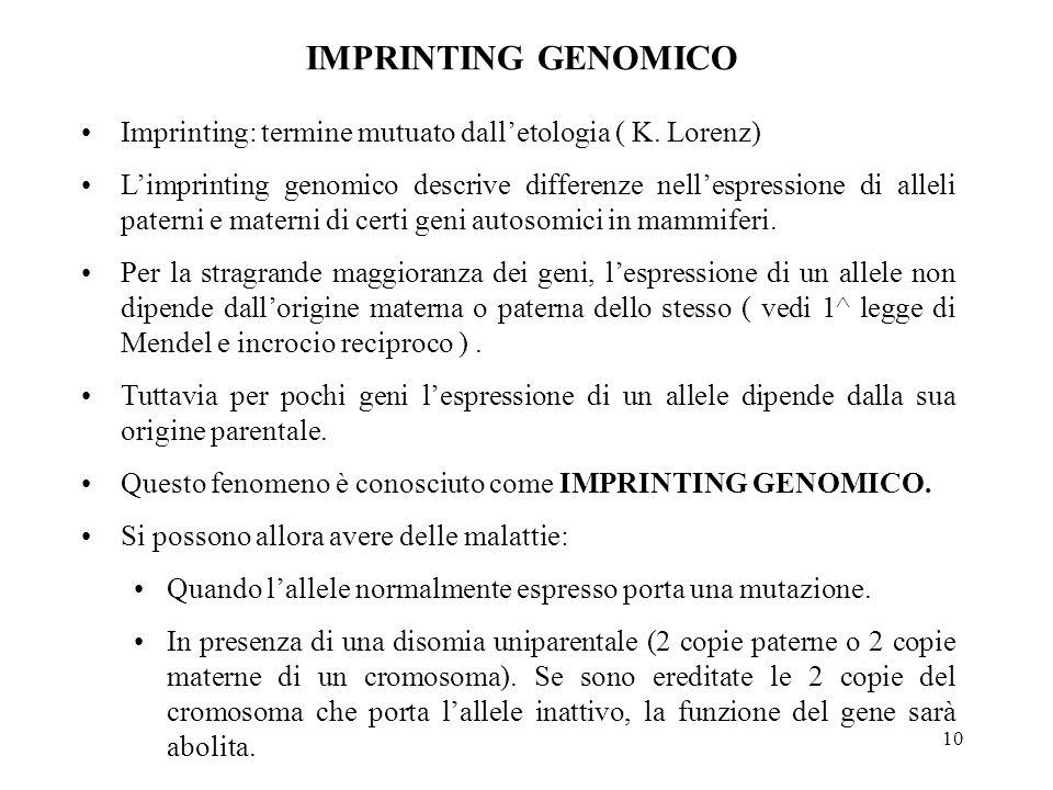10 Imprinting: termine mutuato dall'etologia ( K. Lorenz) L'imprinting genomico descrive differenze nell'espressione di alleli paterni e materni di ce