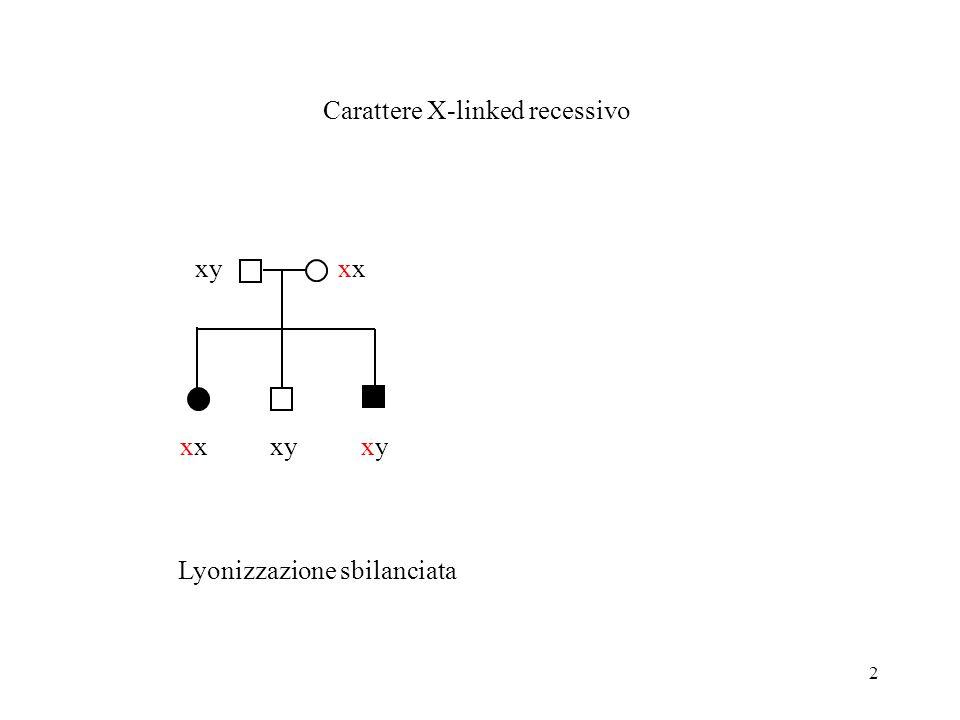 2 x Carattere X-linked recessivo xyx xyxy Lyonizzazione sbilanciata
