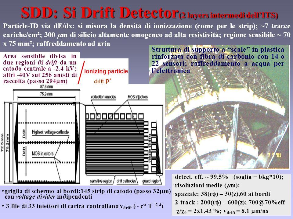 SDD: Si Drift Detector (2 layers intermedi dell'ITS) Particle-ID via dE/dx: si misura la densità di ionizzazione (come per le strip); ~7 tracce cariche/cm²; 300  m di silicio altamente omogeneo ad alta resistività; regione sensibile ~ 70 x 75 mm²; raffreddamento ad aria detect.