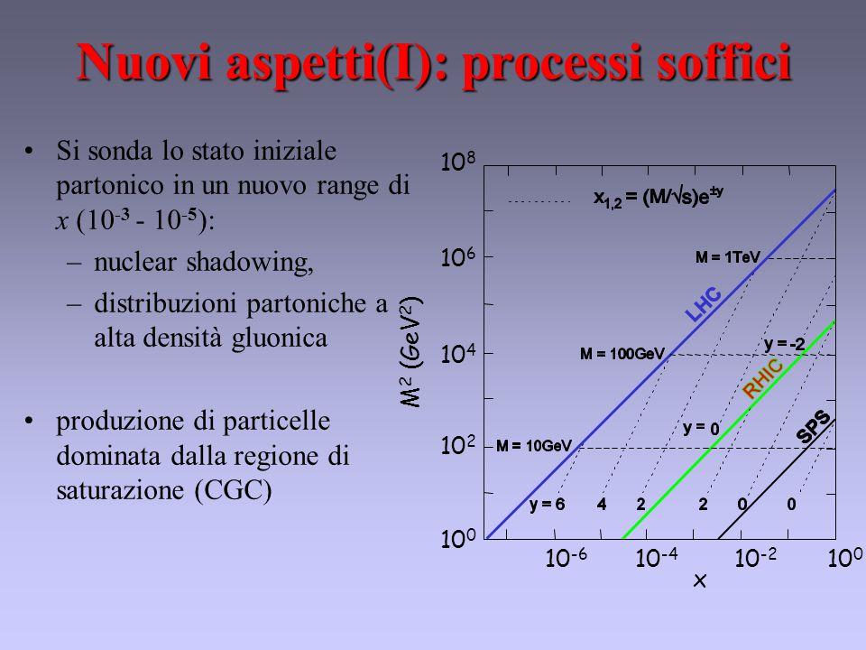 Nuovi aspetti(I): processi soffici 10 -6 10 -4 10 -2 10 0 x 10 8 10 6 10 4 10 2 10 0 M 2 (GeV 2 ) Si sonda lo stato iniziale partonico in un nuovo range di x (10 -3 - 10 -5 ): –nuclear shadowing, –distribuzioni partoniche a alta densità gluonica produzione di particelle dominata dalla regione di saturazione (CGC)