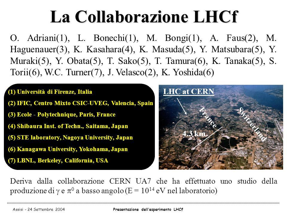 Assisi - 24 Settembre 2004Presentazione dell'esperimento LHCf La Collaborazione LHCf O.