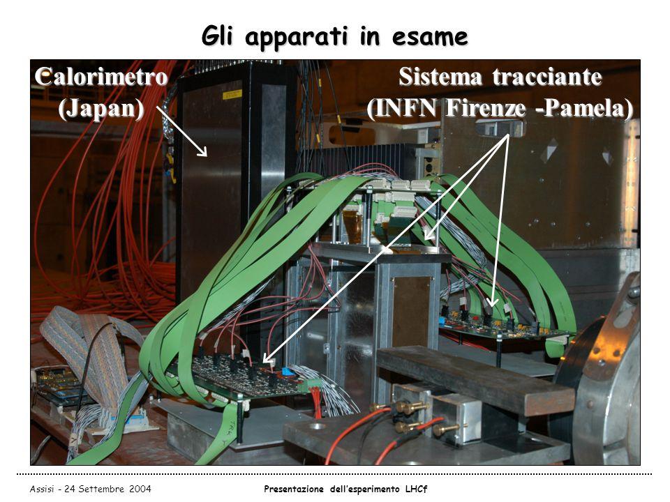 Assisi - 24 Settembre 2004Presentazione dell'esperimento LHCf Gli apparati in esame Sistema tracciante (INFN Firenze -Pamela) Calorimetro (Japan)