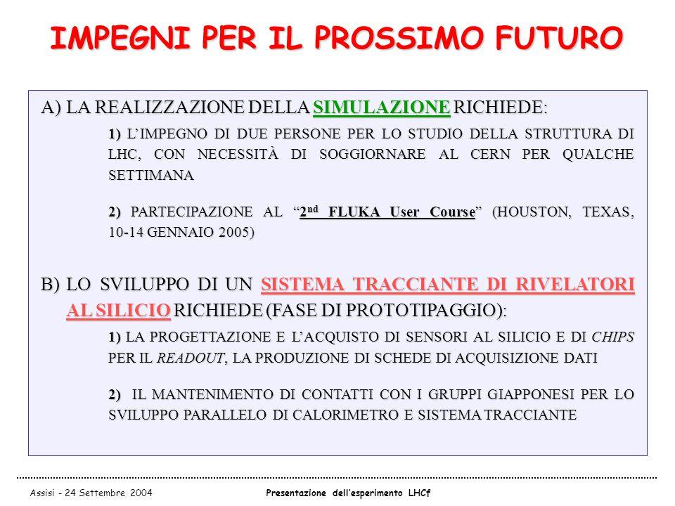 Assisi - 24 Settembre 2004Presentazione dell'esperimento LHCf IMPEGNI PER IL PROSSIMO FUTURO A)LA REALIZZAZIONE DELLA SIMULAZIONE RICHIEDE: 1) L'IMPEGNO DI DUE PERSONE PER LO STUDIO DELLA STRUTTURA DI LHC, CON NECESSITÀ DI SOGGIORNARE AL CERN PER QUALCHE SETTIMANA 2) PARTECIPAZIONE AL 2 nd FLUKA User Course (HOUSTON, TEXAS, 10-14 GENNAIO 2005) B)LO SVILUPPO DI UN SISTEMA TRACCIANTE DI RIVELATORI AL SILICIO RICHIEDE (FASE DI PROTOTIPAGGIO): 1) LA PROGETTAZIONE E L'ACQUISTO DI SENSORI AL SILICIO E DI CHIPS PER IL READOUT, LA PRODUZIONE DI SCHEDE DI ACQUISIZIONE DATI 2) IL MANTENIMENTO DI CONTATTI CON I GRUPPI GIAPPONESI PER LO SVILUPPO PARALLELO DI CALORIMETRO E SISTEMA TRACCIANTE