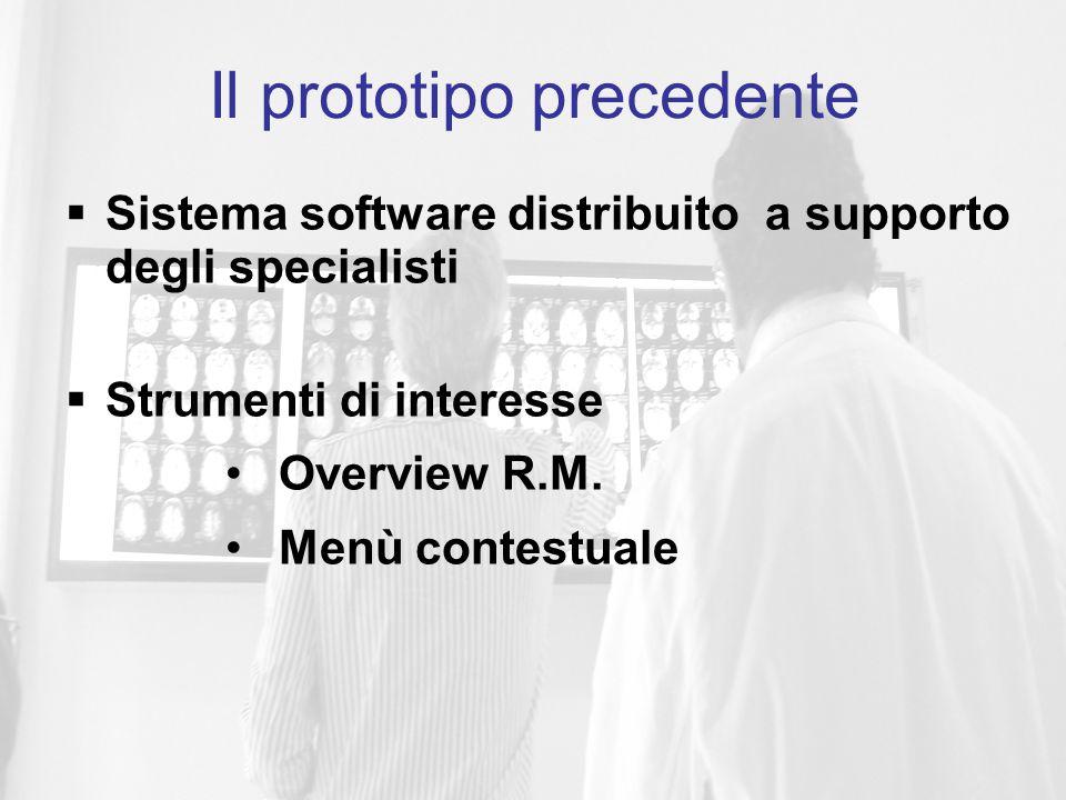  Sistema software distribuito a supporto degli specialisti  Strumenti di interesse Overview R.M.