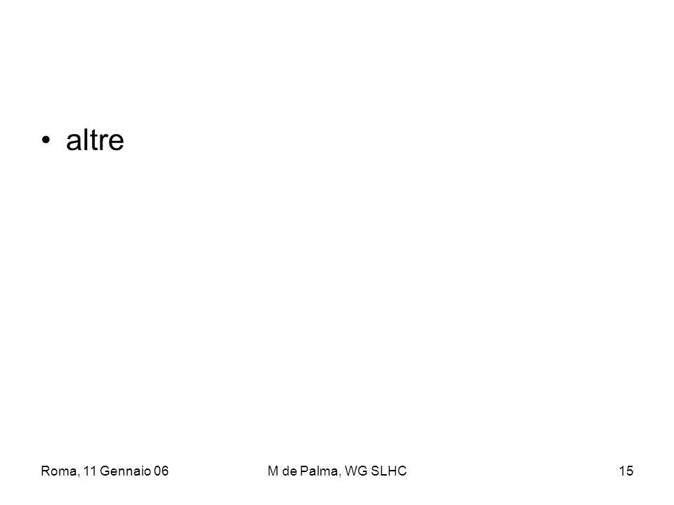 Roma, 11 Gennaio 06M de Palma, WG SLHC15 altre