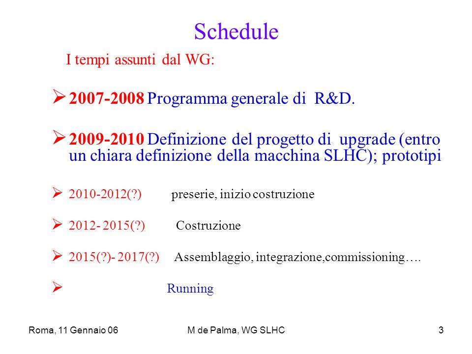 Roma, 11 Gennaio 06M de Palma, WG SLHC3 Schedule I tempi assunti dal WG:  2007-2008 Programma generale di R&D.