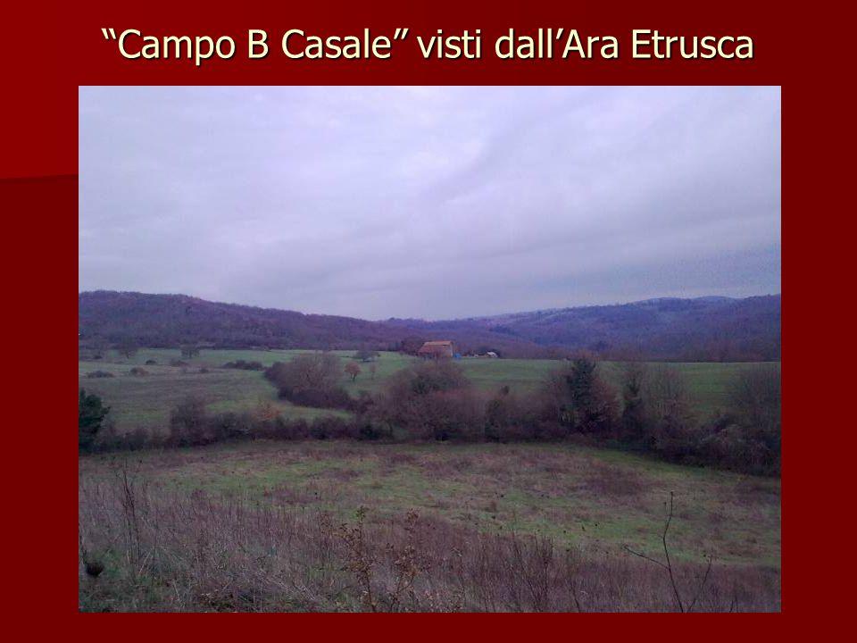 """""""Campo B Casale"""" visti dall'Ara Etrusca"""