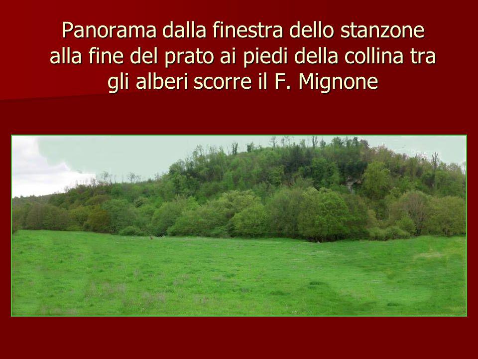 Panorama dalla finestra dello stanzone alla fine del prato ai piedi della collina tra gli alberi scorre il F.