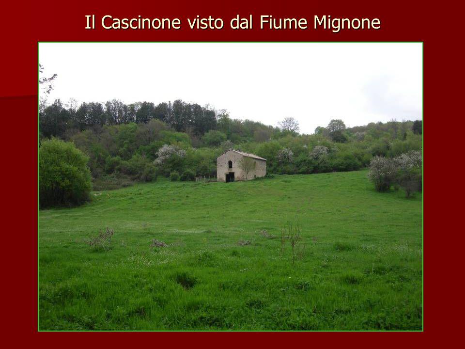 Il Cascinone visto dal Fiume Mignone