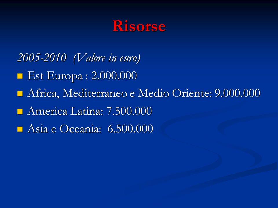 Risorse 2005-2010 (Valore in euro) Est Europa : 2.000.000 Est Europa : 2.000.000 Africa, Mediterraneo e Medio Oriente: 9.000.000 Africa, Mediterraneo e Medio Oriente: 9.000.000 America Latina: 7.500.000 America Latina: 7.500.000 Asia e Oceania: 6.500.000 Asia e Oceania: 6.500.000