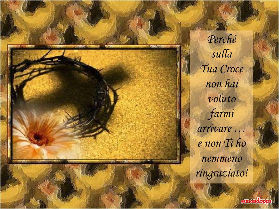 Perché sulla Tua Croce non hai voluto farmi arrivare … e non Ti ho nemmeno ringraziato!