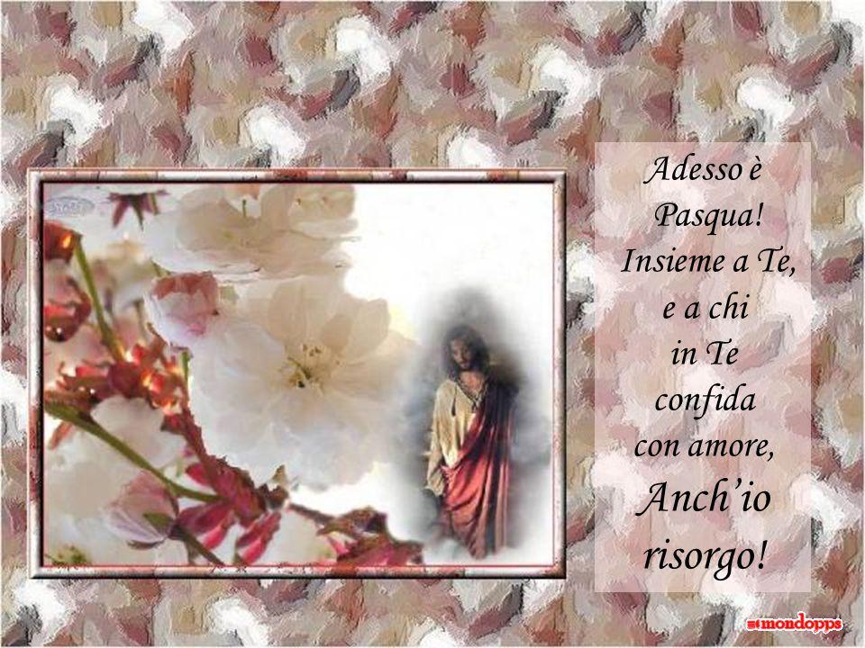Adesso è Pasqua! Insieme a Te, e a chi in Te confida con amore, Anch'io risorgo!