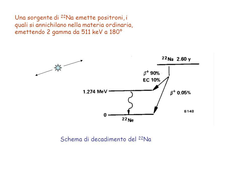 Una sorgente di 22 Na emette positroni, i quali si annichilano nella materia ordinaria, emettendo 2 gamma da 511 keV a 180° Schema di decadimento del