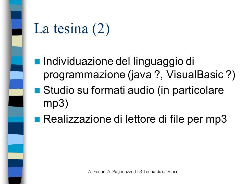 A. Ferrari, A. Paganuzzi - ITIS Leonardo da Vinci La tesina (2) Individuazione del linguaggio di programmazione (java ?, VisualBasic ?) Studio su form
