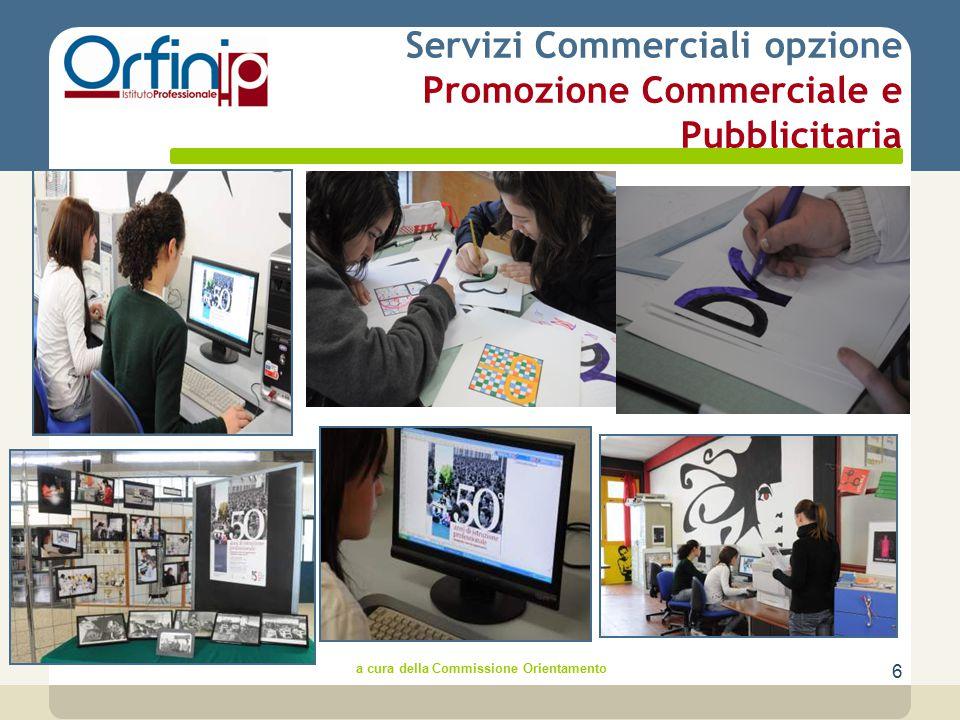 6 Servizi Commerciali opzione Promozione Commerciale e Pubblicitaria a cura della Commissione Orientamento