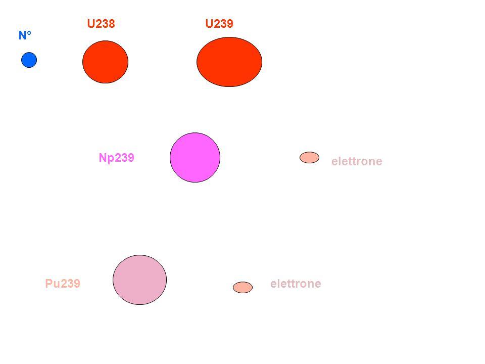 N° U238U239 elettrone Np239 Pu239