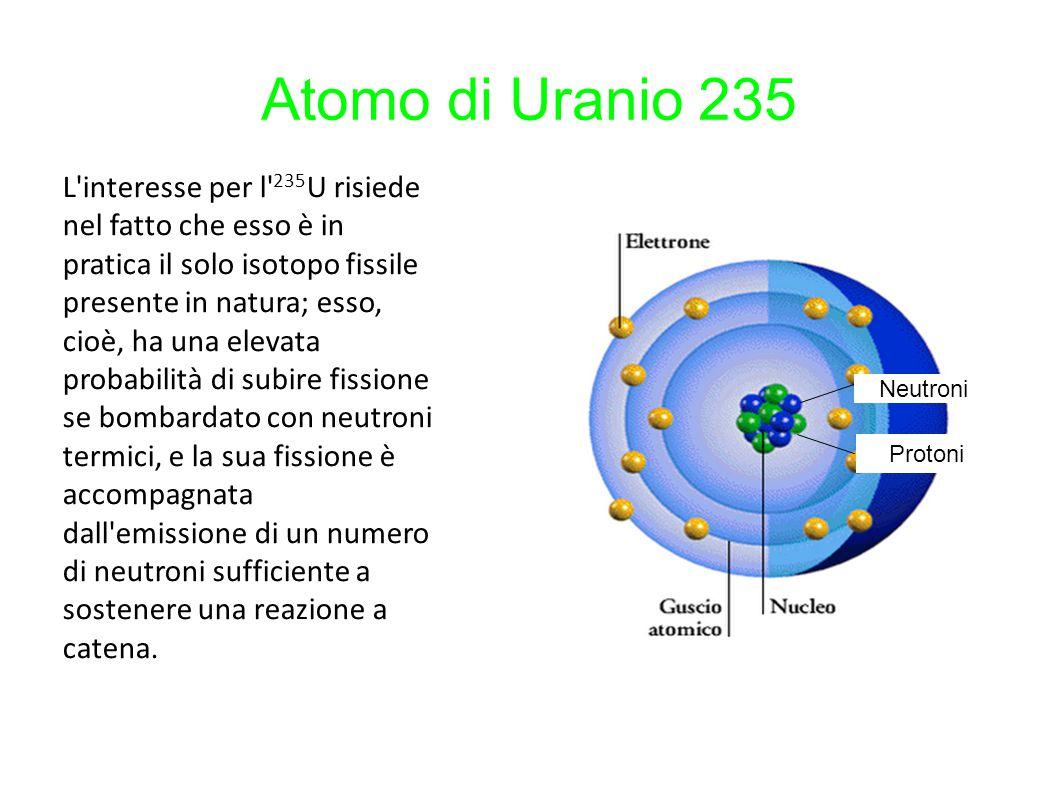Atomo di Uranio 235 Neutroni Protoni L'interesse per l' 235 U risiede nel fatto che esso è in pratica il solo isotopo fissile presente in natura; esso