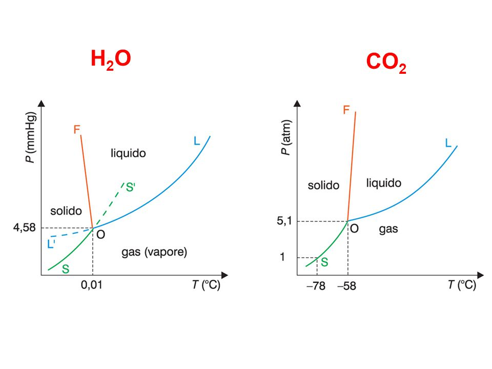 H2OH2O CO 2