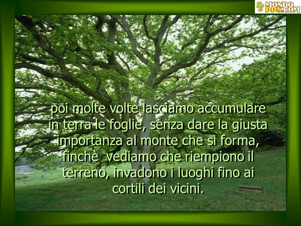 I problemi sono come le foglie di un albero immenso che cadranno sempre, in una maniera o nell'altra, in un ciclo senza fine, ciò che cambia è il modo