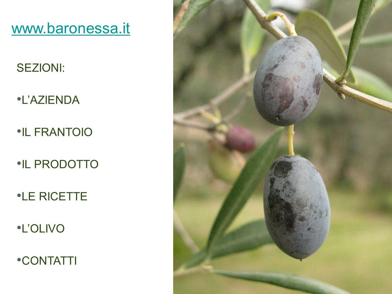 www.baronessa.it SEZIONI: L'AZIENDA IL FRANTOIO IL PRODOTTO LE RICETTE L'OLIVO CONTATTI