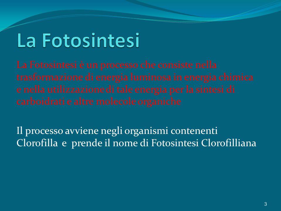 La Fotosintesi è un processo che consiste nella trasformazione di energia luminosa in energia chimica e nella utilizzazione di tale energia per la sintesi di carboidrati e altre molecole organiche Il processo avviene negli organismi contenenti Clorofilla e prende il nome di Fotosintesi Clorofilliana 3