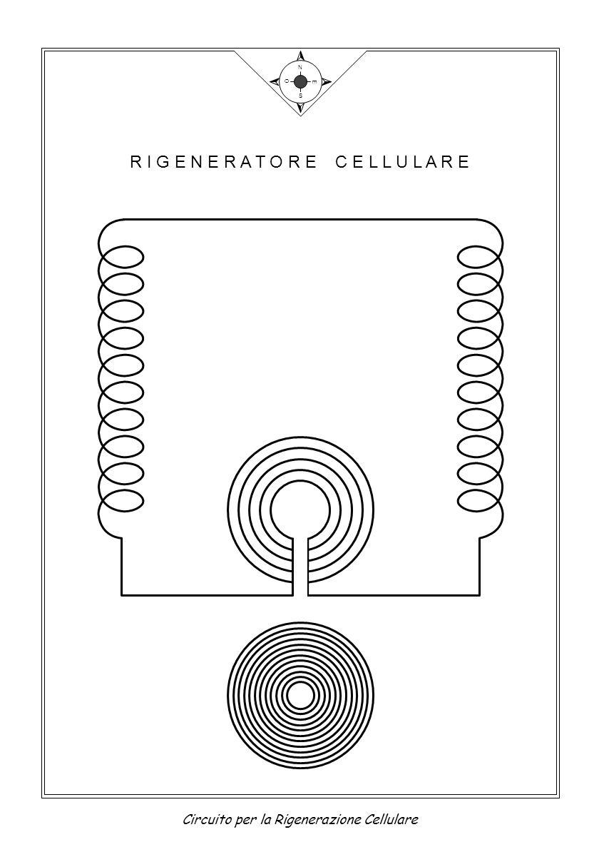 R I G E N E R A T O R E C E L L U L A R E N S E O Circuito per la Rigenerazione Cellulare