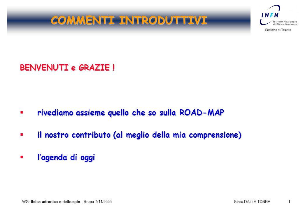 1 Sezione di Trieste Silvia DALLA TORRE WG: fisica adronica e dello spin, Roma 7/11/2005 COMMENTI INTRODUTTIVI BENVENUTI e GRAZIE .