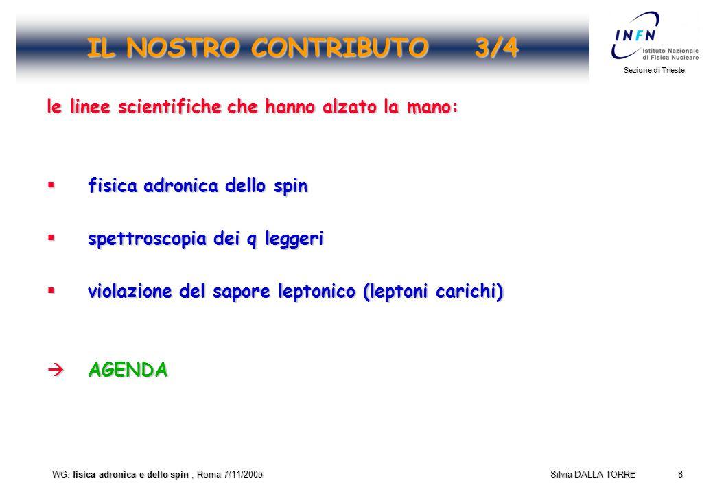 9 Sezione di Trieste Silvia DALLA TORRE WG: fisica adronica e dello spin, Roma 7/11/2005 IL NOSTRO CONTRIBUTO 4/4 per completezza, ecco cosa so delle attivita' contigue del gruppo III:  fattori di forma e.m.